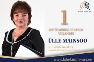 Parimad kutselised maaklerid SEPTEMBER-Ülle-Viljandi-kuu-parim-2020