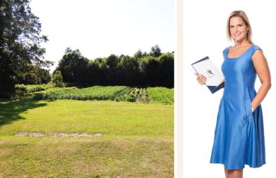 põllumaa-artikkel-Lahe-Kinnisvara-Karin-Lapp-